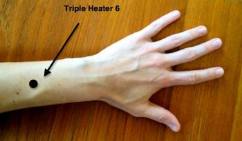 2013-11-26-acupuncturepoint_tripleheater6